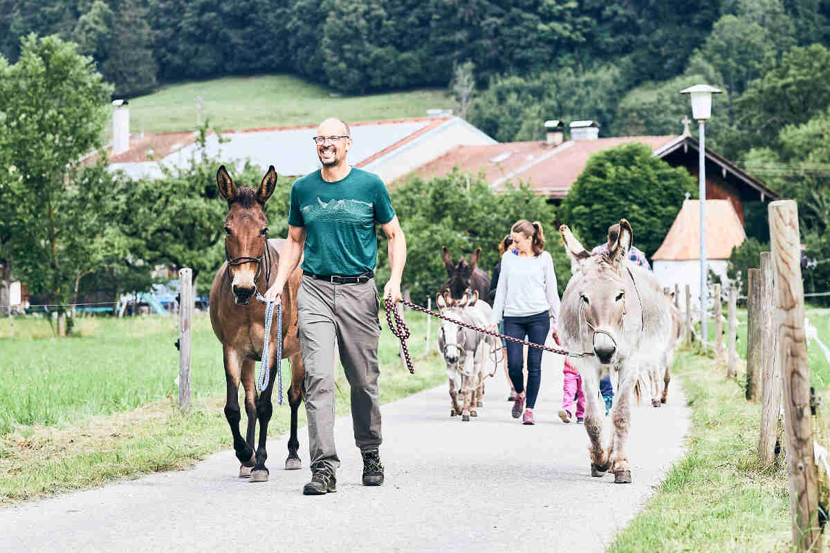 Eselwandern am Tegernsee