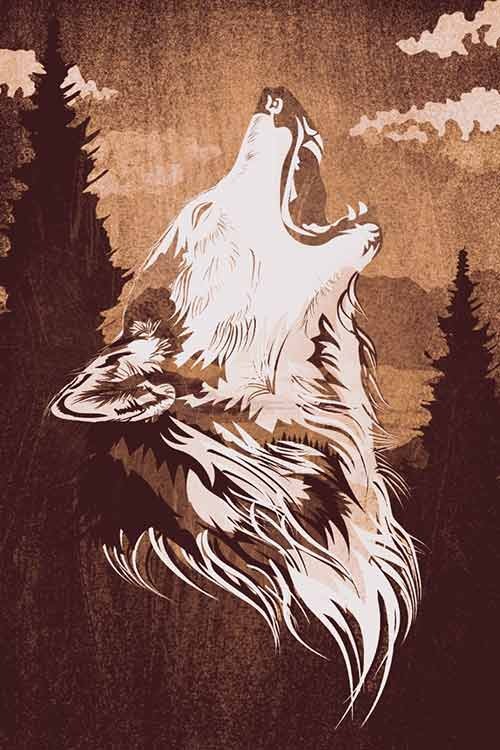 Illustration Wolf Esteban Salas Campos